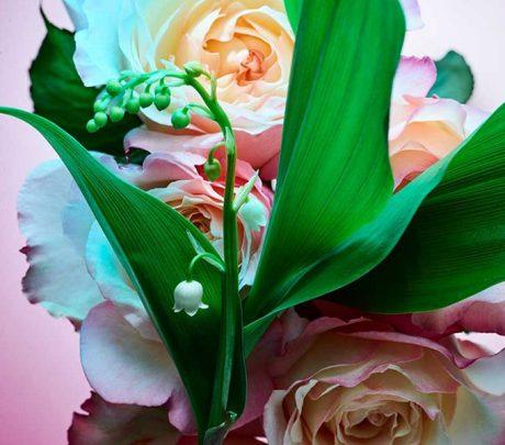 Rose-Goldea-Blossom-Delight-Eau-de-Parfum-Spray-5
